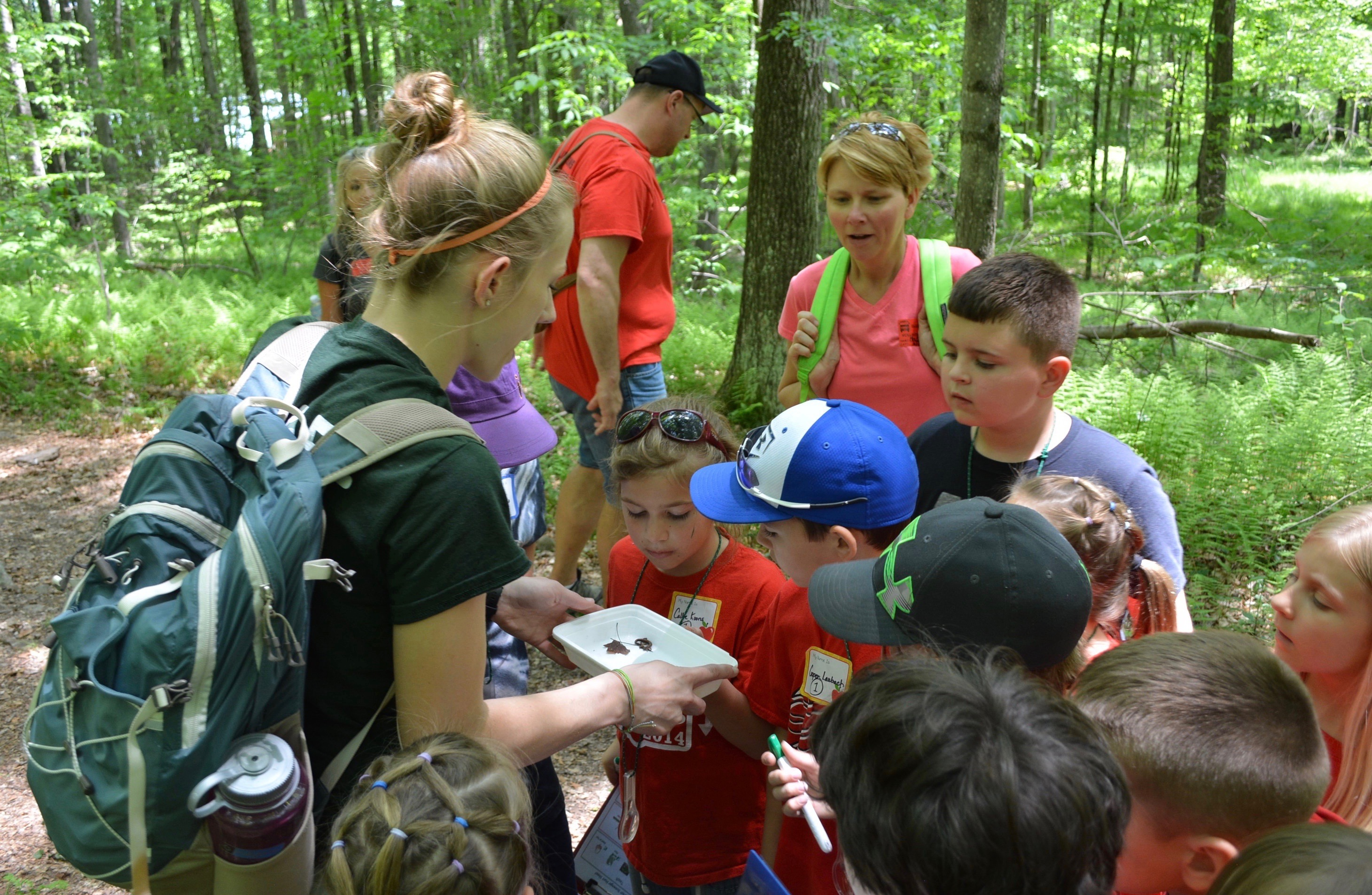 Come Be A Part Of A Team Of Professionals That Are Organized, Passionate  For Camp, Nature And Working With Children. Gain Valuable Hands On  Experience ...